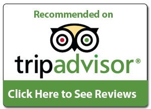 Mamma Mia Tripadvisor reviews